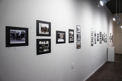 Tia Juana fotos-4